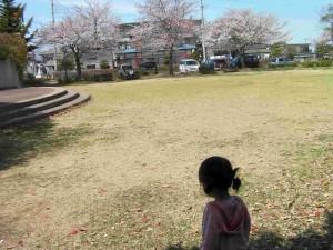 アカデミア館の公園1